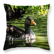 Swimming Happily Throw Pillow