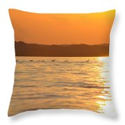 Swimming Into The Sun Throw Pillow