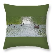 Swimming Lessons Throw Pillow