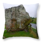 Swindon Stone Throw Pillow