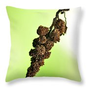 Swinging To And Fro... Throw Pillow