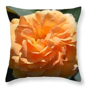 Swirling Peach Rose Throw Pillow