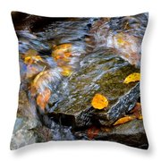 Swirling Stream Of Leaves  Throw Pillow