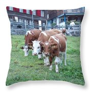 Swiss Cows Throw Pillow