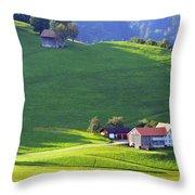 Swiss Farm House Throw Pillow