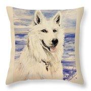 Swiss Shepherd Throw Pillow