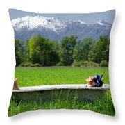 Swiss Spa Throw Pillow
