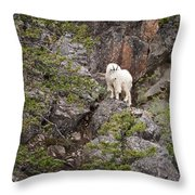 Switchback Goat 4 Throw Pillow