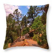 Switchback Path Throw Pillow