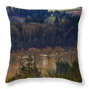 Swollen River Throw Pillow
