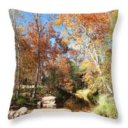 Sycamore And Cottonwood Trees Along The East Verde River Throw Pillow