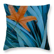 Sycamore Leaf And Sotol Plant Throw Pillow