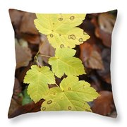 Sycamore Leaves Germany Throw Pillow