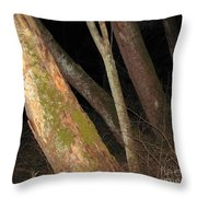 Sycamore Nightscape Throw Pillow