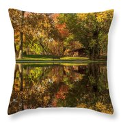 Sycamore Reflections Throw Pillow