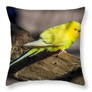 Sylvan Heights 001 Throw Pillow