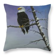 Symbol Of Freedom Throw Pillow