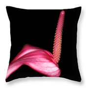 Symbolic Throw Pillow by Camille Lopez