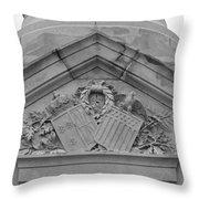 Symbols Of Freedom Throw Pillow by Teresa Mucha