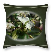 Sympathy Greeting Card - Elegant Floral Green And White Throw Pillow