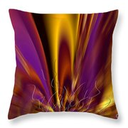 Symphony Of Light 04 Throw Pillow