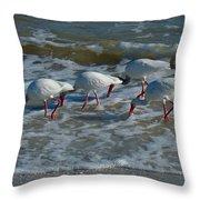 Synchronized Beach Combing Throw Pillow