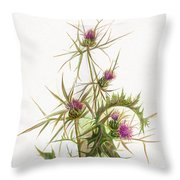 Syrian Thistle C1950 Throw Pillow