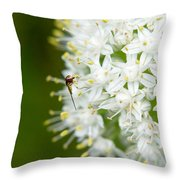 Syrphid Feeding On Alliium Blossom Throw Pillow