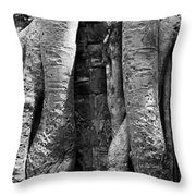Ta Prohm Roots And Stone 04 Throw Pillow