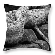 Ta Prohm Roots And Stone 06 Throw Pillow