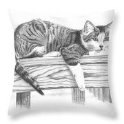 Tabby Cat Throw Pillow