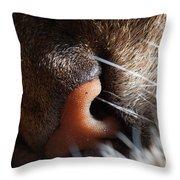 Tabby Cat's Nose Throw Pillow