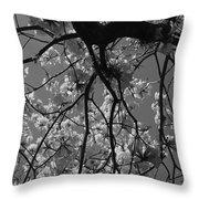 Tabebuia Tree 1 Throw Pillow