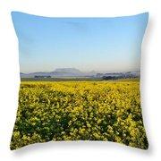 Table Mountain At The Horizon Throw Pillow