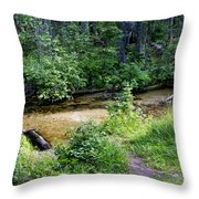 Tacoma Creek 1 Throw Pillow