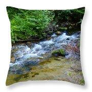 Tacoma Creek 2 Throw Pillow