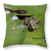 Tadpole And Frog Throw Pillow