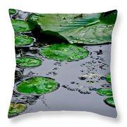 Tadpole Haven Throw Pillow by Frozen in Time Fine Art Photography