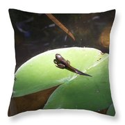 Tadpole On Lily Pad Throw Pillow