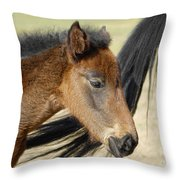 Tag-a-long Throw Pillow