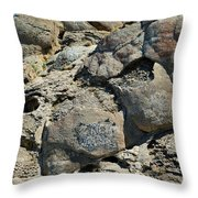 Tag At Your Own Risk Throw Pillow