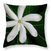 Tahitian Gardenia Throw Pillow