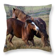 Tail Chasing Throw Pillow