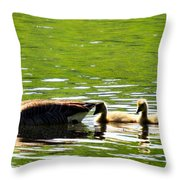 Tail Shade Throw Pillow
