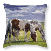Tail Wind Throw Pillow by JQ Licensing