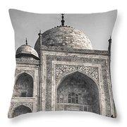 Taj Dressed In White Throw Pillow