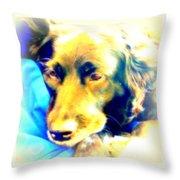 Take A Nap With Me  Throw Pillow