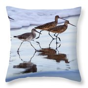 Take It In Stride Throw Pillow