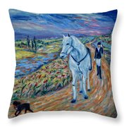 Take Me Home My Friend Throw Pillow