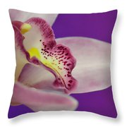 Take Me In Your Arms Throw Pillow
